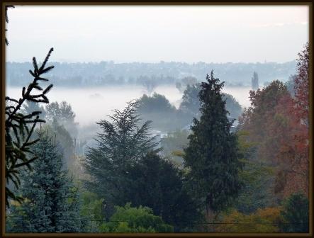 034  A Hévízi tó reggeli ködben.JPG