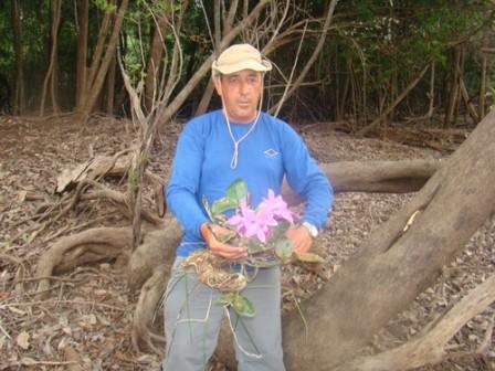 Az igazi gyűjtő a fáról szedi Cattleya-ját.jpg