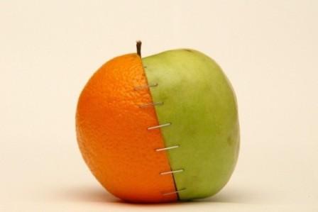Frankenstein-alma a világhálóról_1.jpg