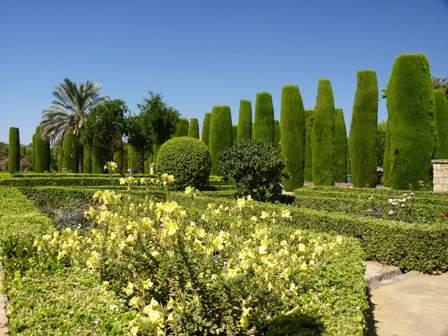 A cordobai Alcazar palota parkjában évszázadok óta jól érzik magukat az örökzöldek.jpg