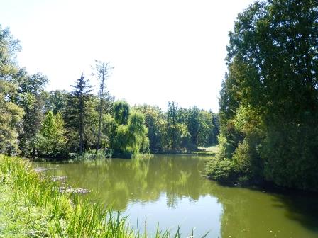 10 A tó sem sínylette meg a száraz nyarat.JPG
