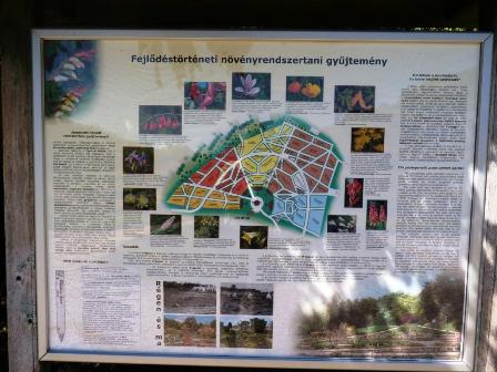 11 A rendszertani gyüjtemény segít megérteni a természetet.JPG