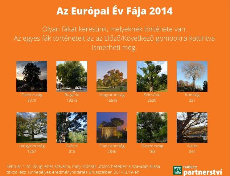 Európai év fája 2014.jpg
