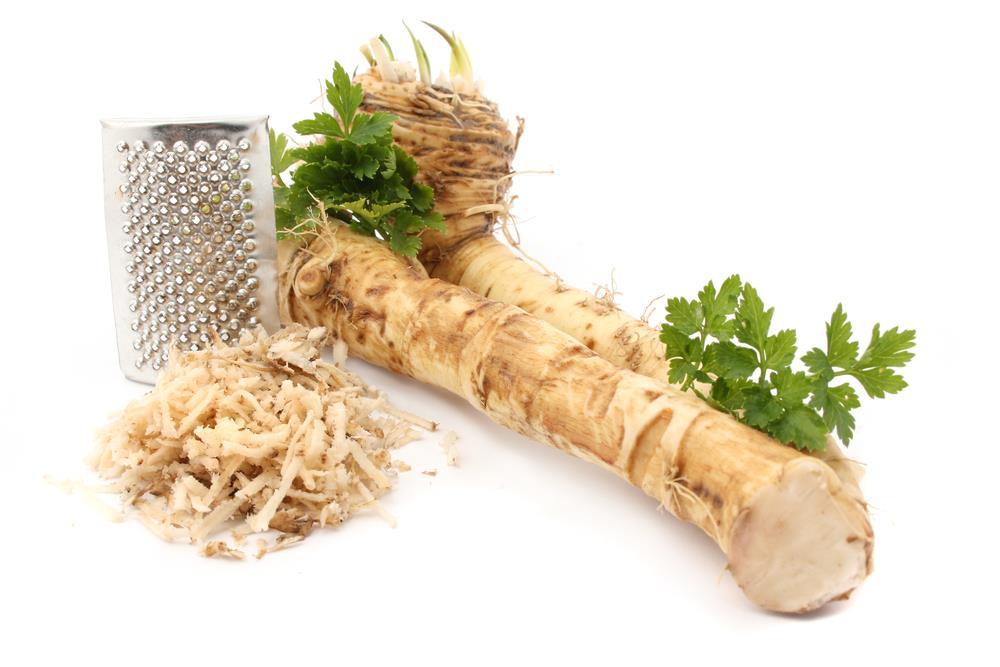 horseradish-04.jpg