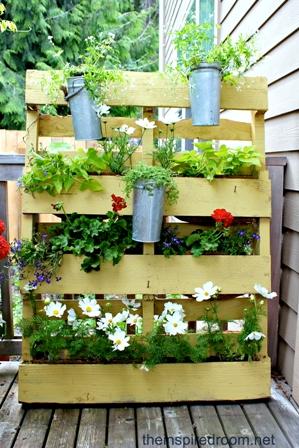plants-in-a-pallet.jpg