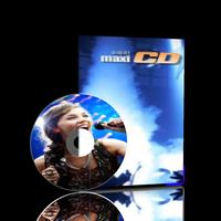 maxi1200.png