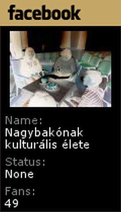 bakonak_feszes_lajk_kepe_1365497982.jpg_420x735