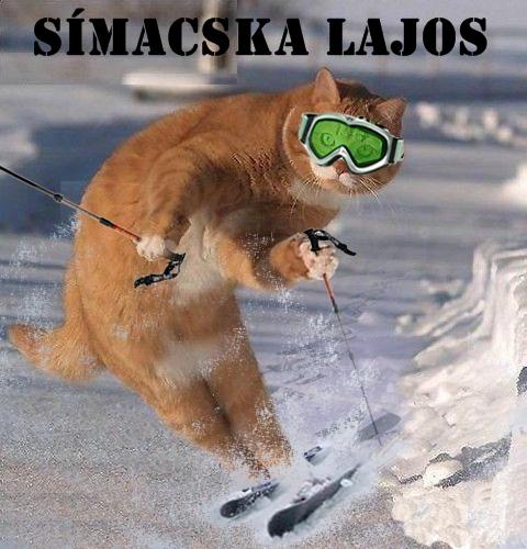 simicska-lajos.jpg