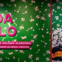 Nyerj betekintést Frida világába