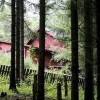 Itt fog lakni Vikernes