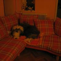 (: Az új kanapéM...:)