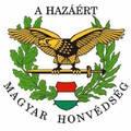 317. A Magyar Honvédség fegyvernemi napjai