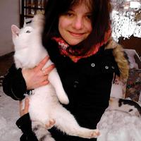 Cicabolond illusztrátorok és macskáik 4.