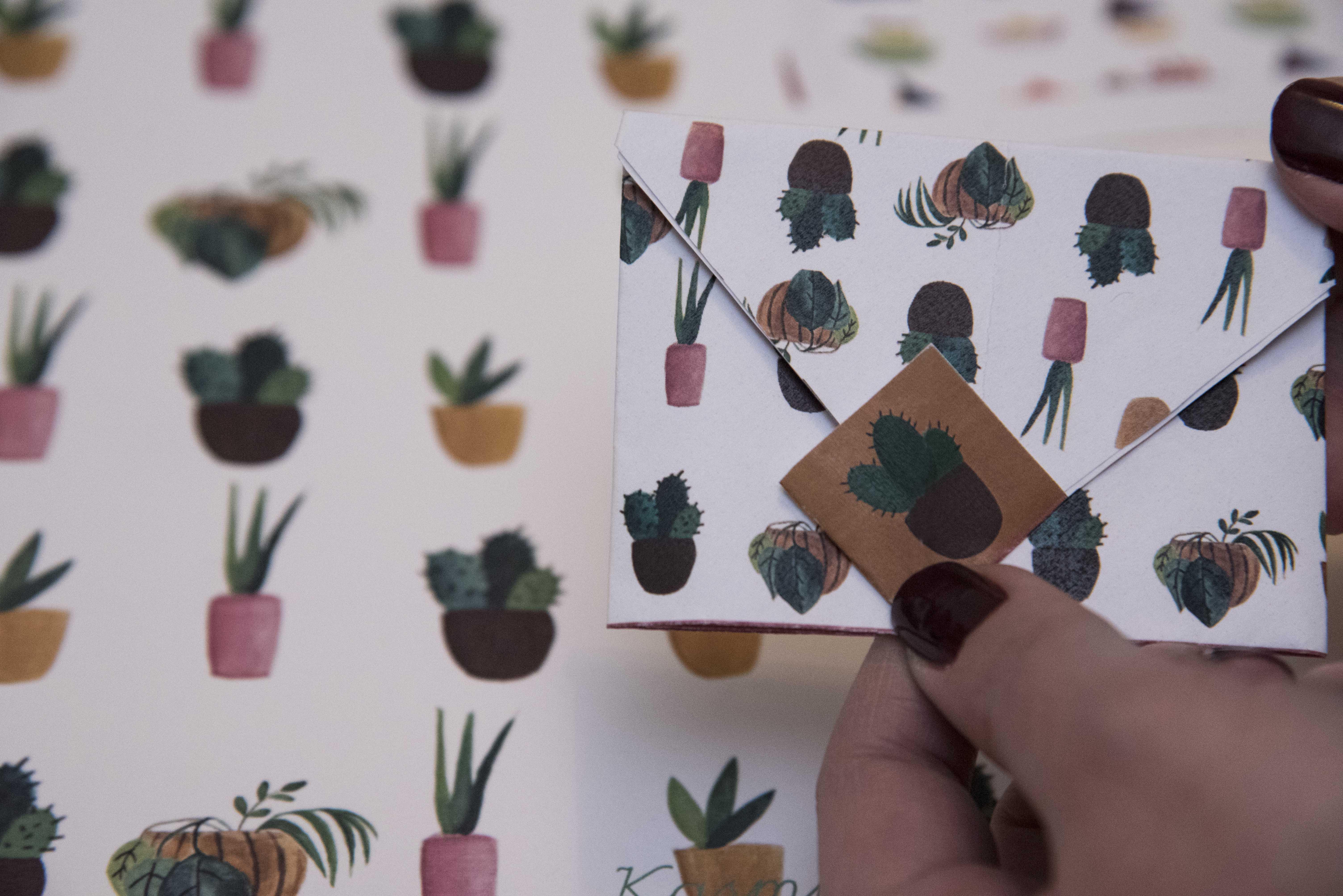 kaktusz_boritek.jpg