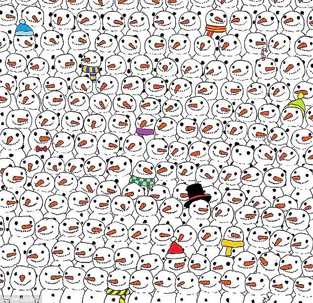 where_s_the_panda_dudas_gergely.jpg