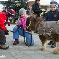 Rénszarvasok, Mikulás és törpepóni a Karácsonyházban vasárnap