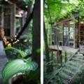 Álomház a fák között - A világ legnépszerűbb Airbnb apartmanja