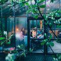 Közel a természethez - Kertek, teraszok és szobanövény-kertészkedés