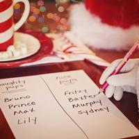 Már most tervezz előre- karácsonyi vásárlás okosan