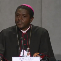 Kameruni püspök: A fiatalok terén Afrika a példa