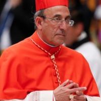 Portugál bíboros: A járványt Isten büntetésének tartani