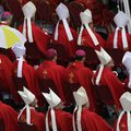 A pápaválasztó bíborosok között jövőre többségbe kerülnek a Ferenc pápa által kinevezettek