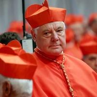 Gerhard Müller bíboros a nős papságról