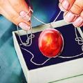 Embriókból készít ékszert egy ausztrál cég