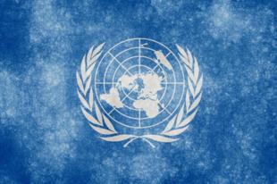 Marguerite A. Peeters az ENSZ 2015 utáni fejlesztési tervéről: Az IIS 301-es számú jelentése