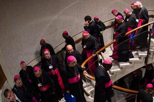 Szavazati jogot kér a női résztvevőknek a pán-amazóniai szinódus egy püspöki csoportja
