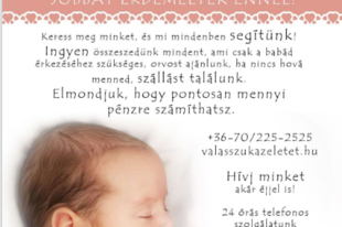 Interjú: egy új magyar életvédő csoport hihetetlen munkájáról