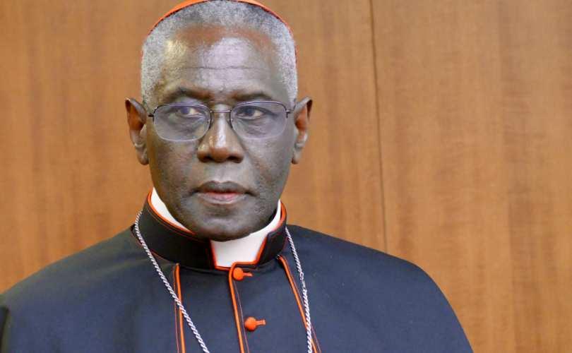 robert_sarah_synod_810_500_55_s_c1.jpg