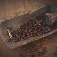 A kávé történelme 1700-1750 között