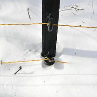 Villanypásztor a hó alatt