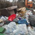 Újabb két helyszínen szűnt meg illegális hulladéklerakó a Parkerdőnél