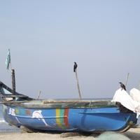 Érkezés Arambolba