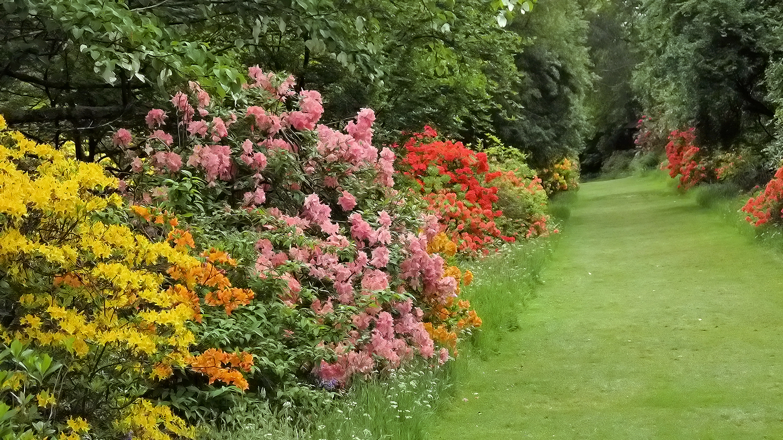 mount-usher-gardens-7.jpg