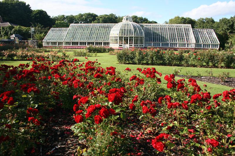 rose_garden_1.jpg