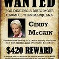 McCainék dílerkednek