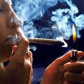 Betiltották a dohányzást a coffeeshopokban
