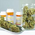 A németeknél gyógyszertárakba kerül a fű