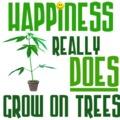 A boldogság tényleg a fákon nő