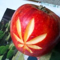 Napi egy alma az egészség kulcsa!