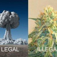 Legál-illegál