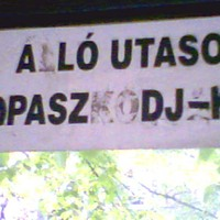 A ló utasok kopasz DJ-k