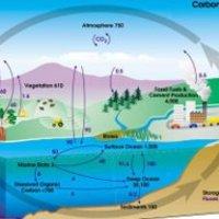 Árvíz, klímakutatás, szén-dioxid-visszasajtolás