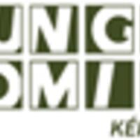Hungarocomix 2013: Képregényt karácsonyra! (1. rész)