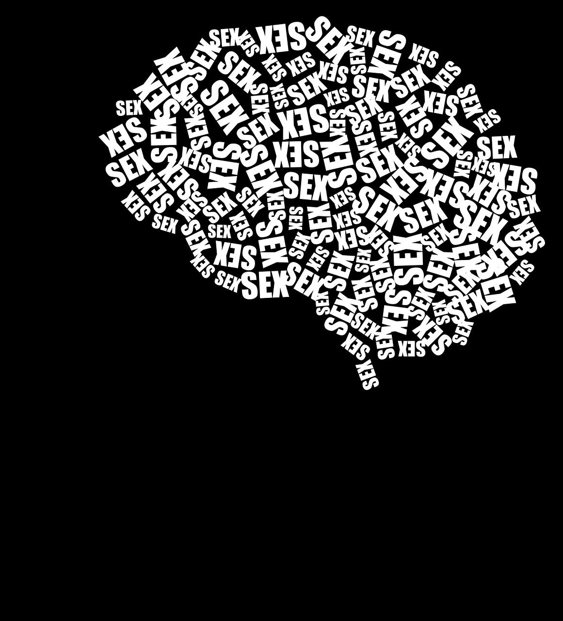cranium-2952566_1280.png