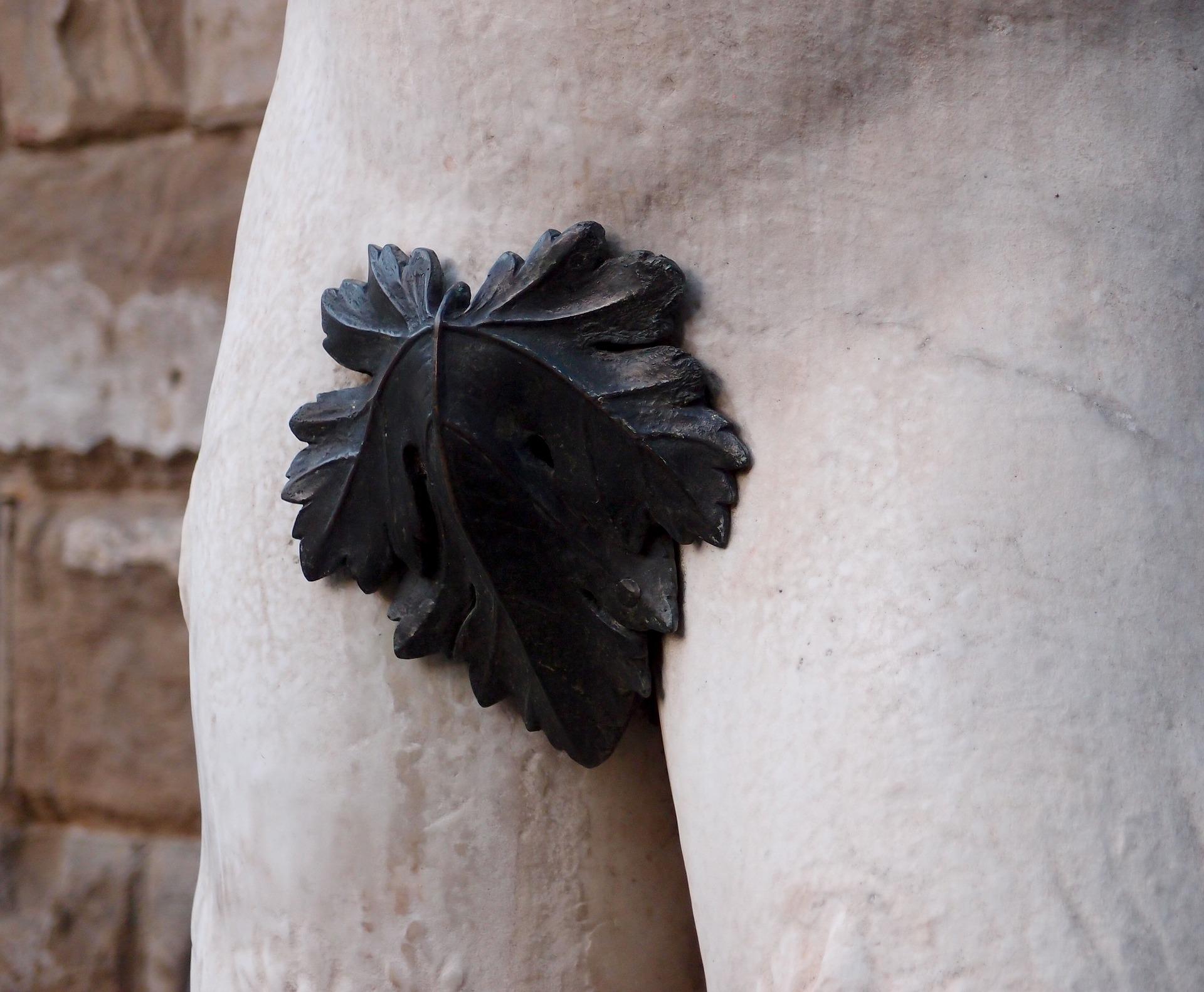 fig-leaf-1657854_1920.jpg
