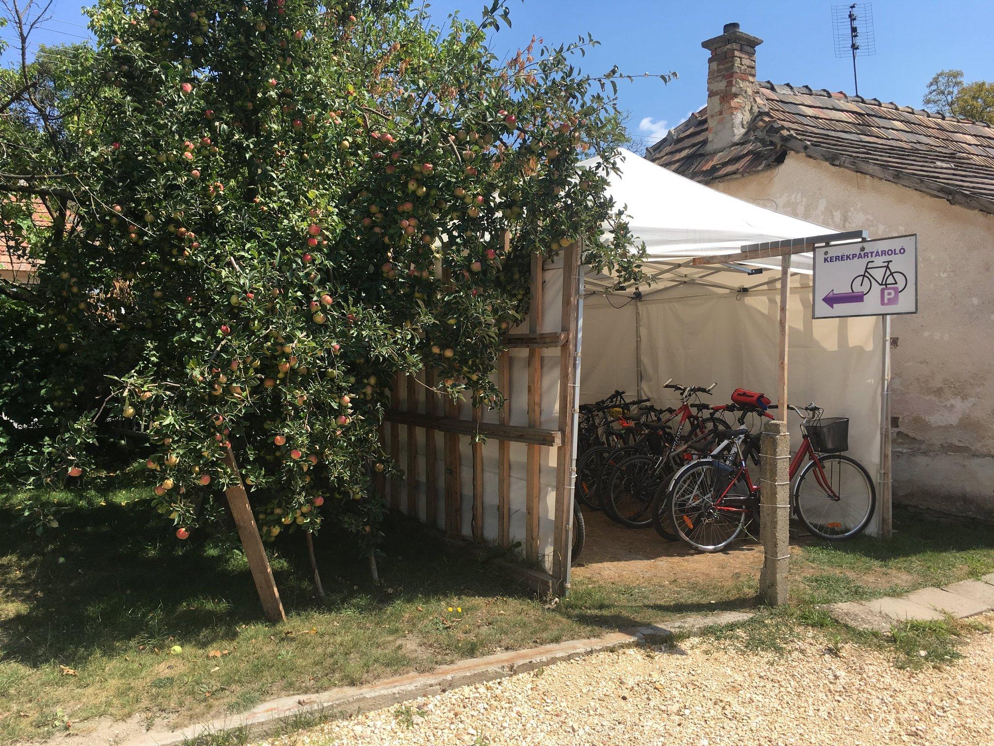Kerékpár tároló az almafák árnyékában